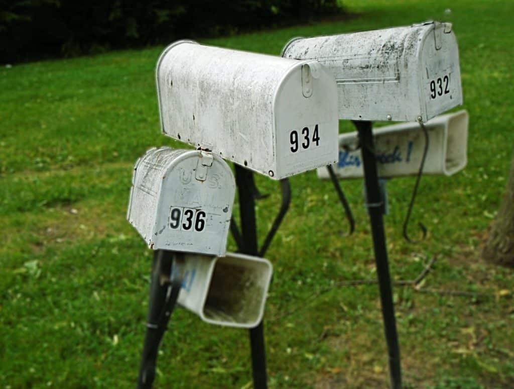 numerology types