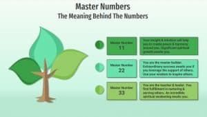 master numbers infographic