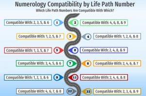 numerology compatibility by life path number infographic