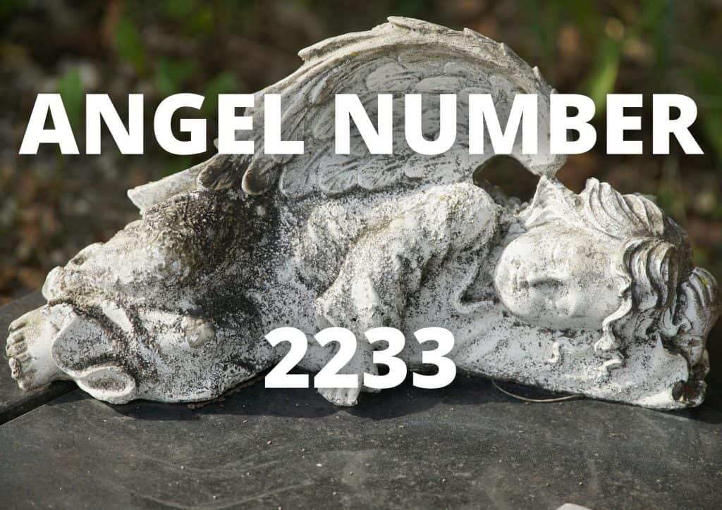 Angel Number 2233